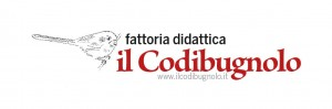 ilcodibugnolo.it